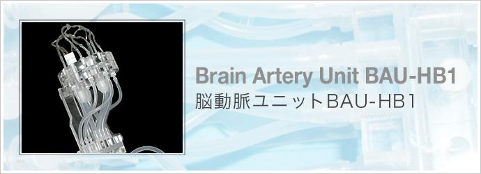 脳動脈ユニット