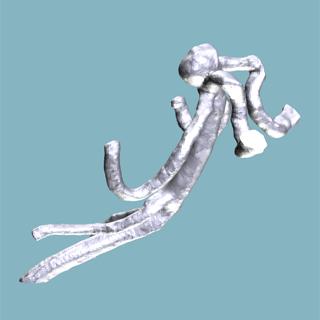 3d血管モデル4