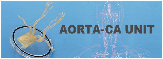 AORTA-CA UNIT